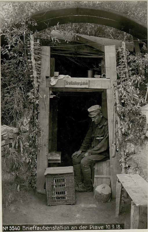 Brieftaubenstation am Piave