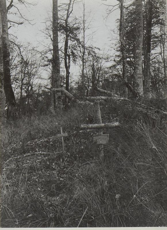 Deutschmeistergräber auf der Jagodnja