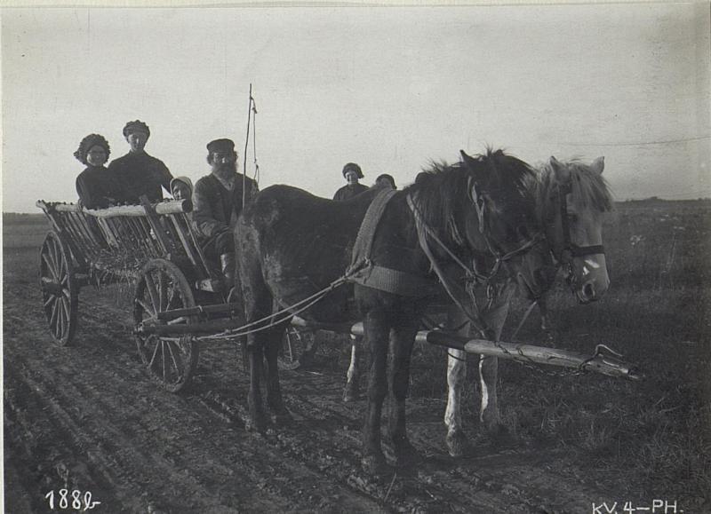 Wolhynischer Bauernwagen in Wladimir Wolinsky