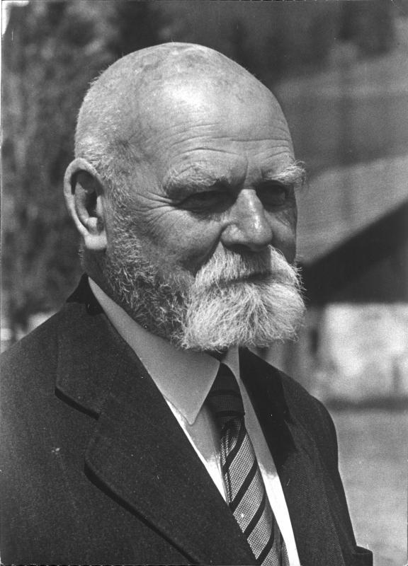 Theodor Körner von Blaha, Franz