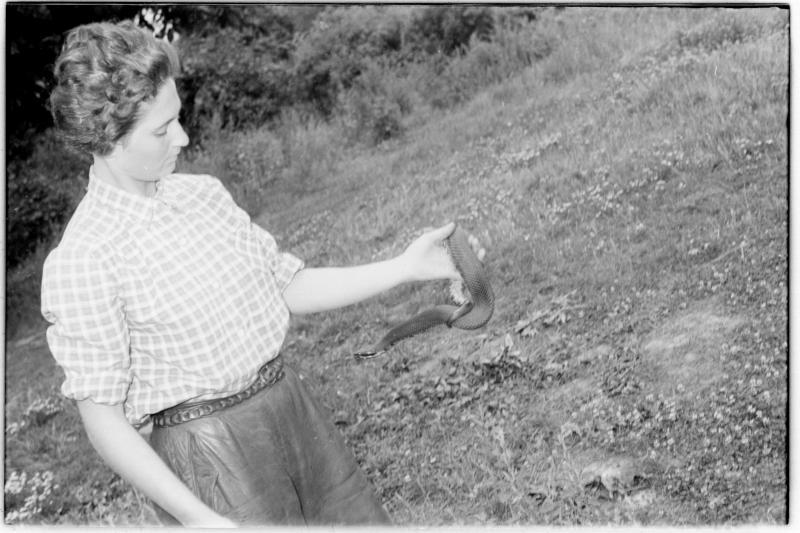 Frau hält Schlange. Wiener Schlangenfänger Weis und Litschauer vor ihrer Abfahrt nach Afrika von Scheidl