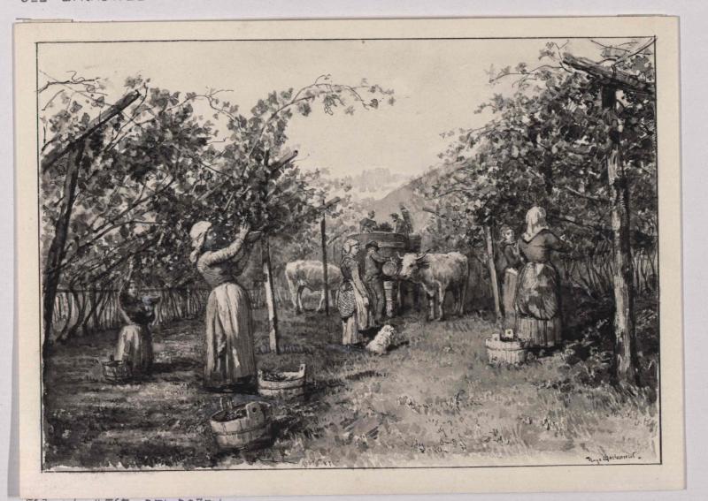 Weinlese bei Bozen von Charlemont, Hugo