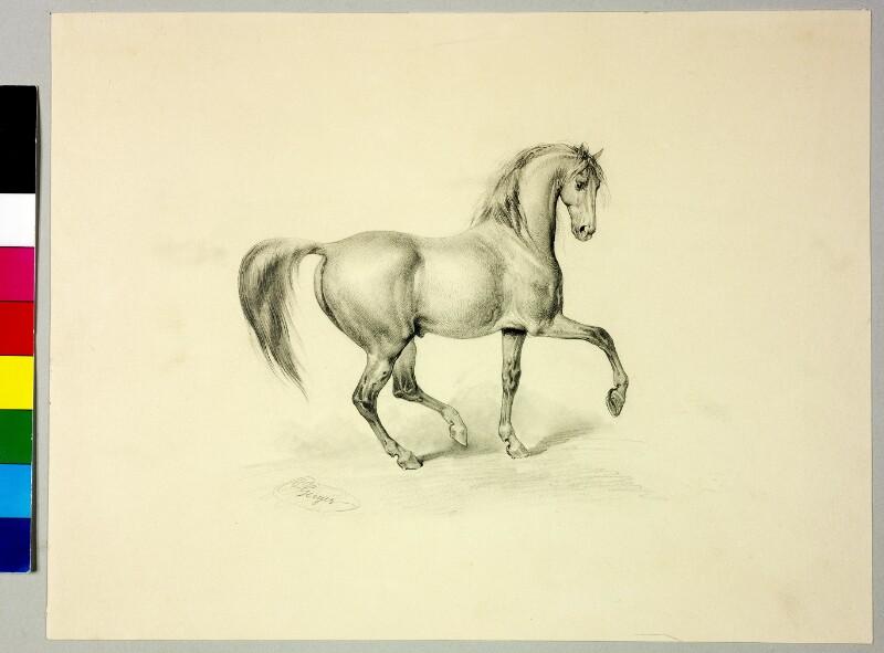 Pferd von Geiger, Peter Johann Nepomuk