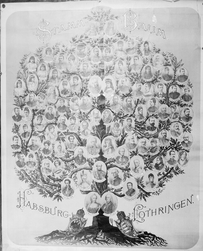 Habsburger-Stammbaum
