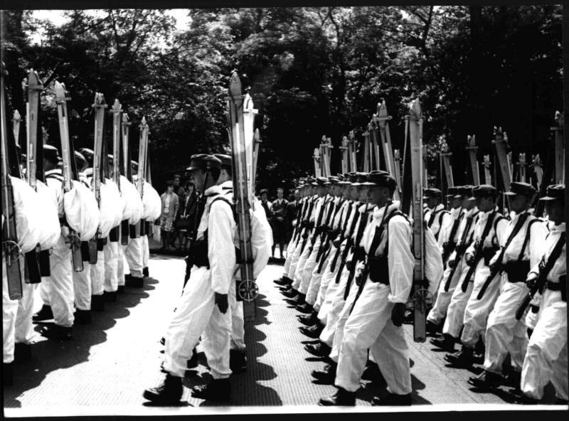 Parade des österreichischen Bundesheeres von Hilscher, Albert