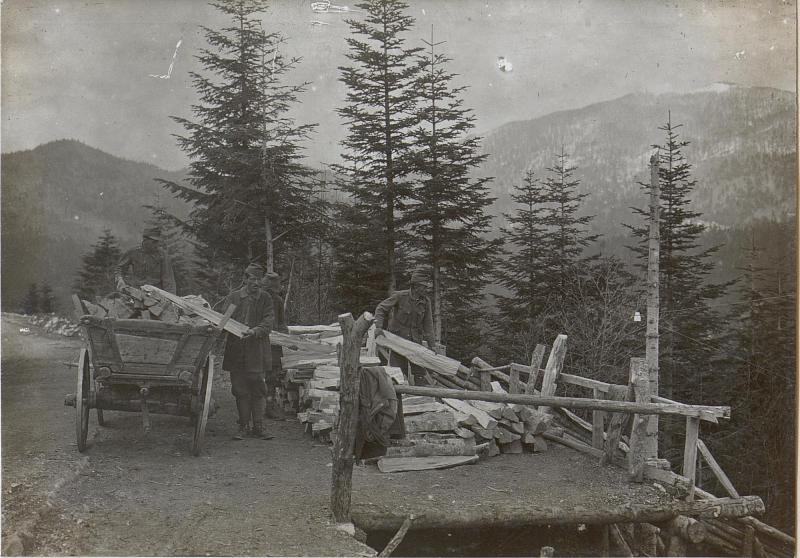 Holz und Kohlengewinnung in Predmeja von K.u.k. Kriegspressequartier, Lichtbildstelle - Wien