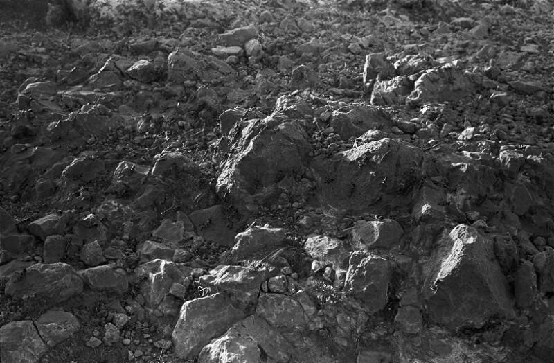 1952 gefährdeten Heuschrecken-Schwärme die Ernte im Iran von Lessing, Erich