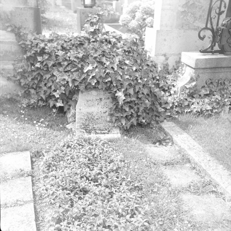 Wien 18, Neustifter Friedhof von Zessner-Spitzenberg, Brigitta