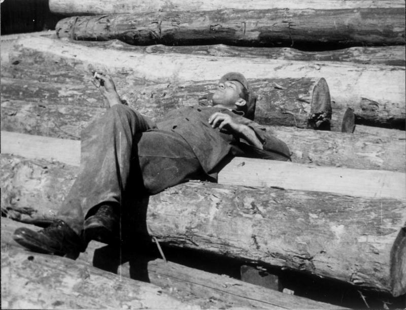 Mann auf Baumstämmen liegend, schlafend