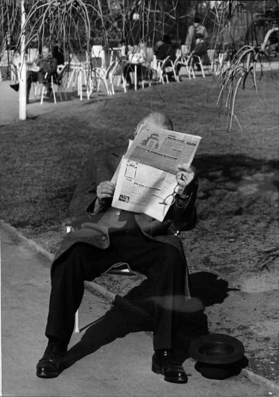Frühling im Stadtpark, ein Mann sitzt auf einem Sesel und liest Zeitung