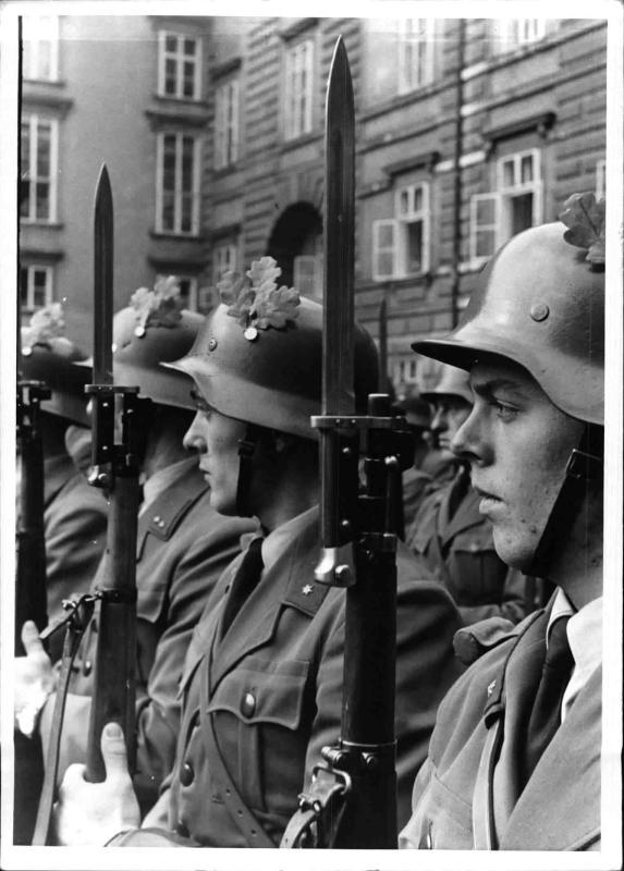 Parade der österreichischen Zollwache auf dem Heldenplatz