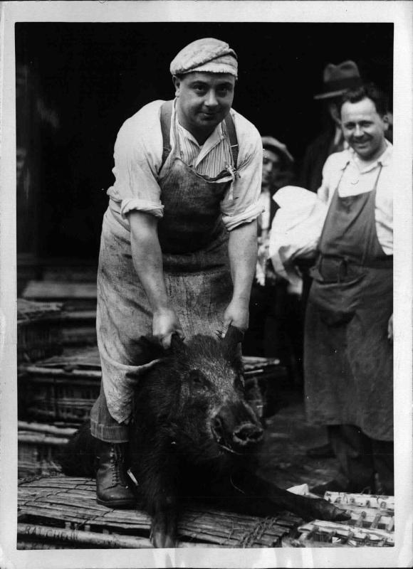 Mann präsentiert am Markt ein Wildschwein von New York Times Photo