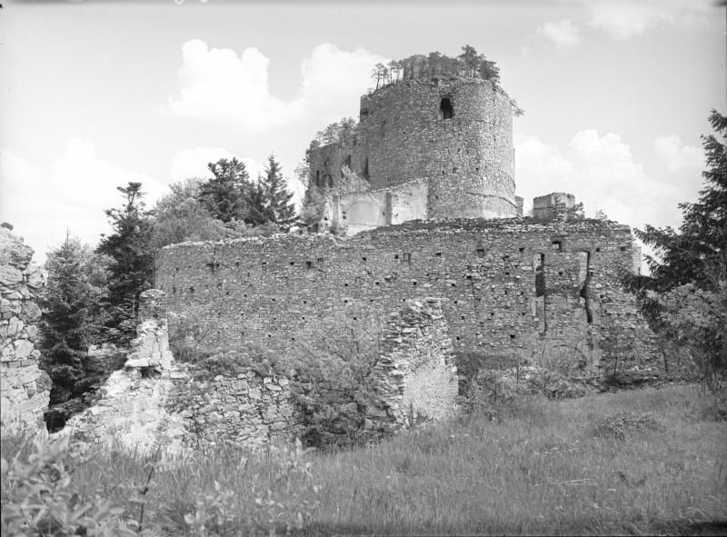 Burgruine Landsee von Brühlmeyer, Hermann