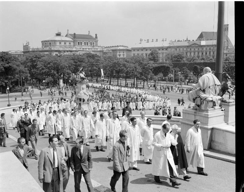 Demonstration der Wiener Gastärzte gegen ihren ...
