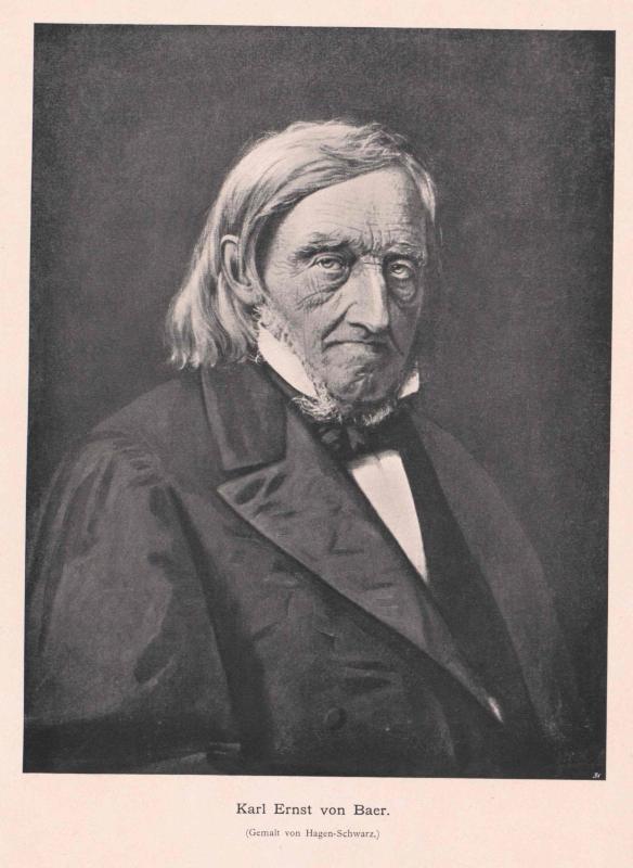 Baer, Karl Ernst von