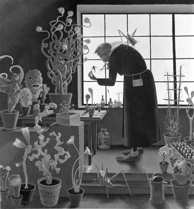 Der Gärtner von Sedlacek, Franz